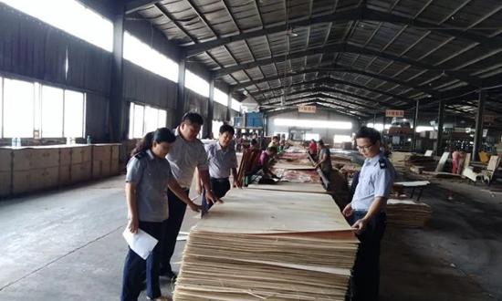 安徽省宿州市林检站派员到砀山县检查指导林业植物检疫执法工作