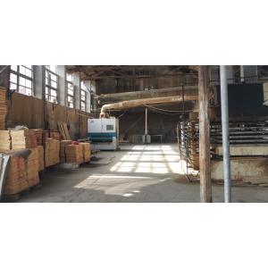 长期供应各种尺寸松木、杉木板