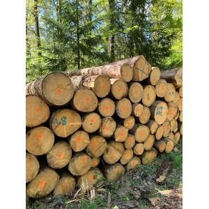 德国云杉原木期货