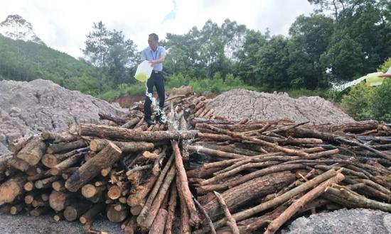 容县30吨木材被烧,是何原因?