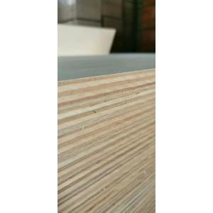 真成木业南美KONEI夹板 平整挺度够尺寸足适用广经济超值