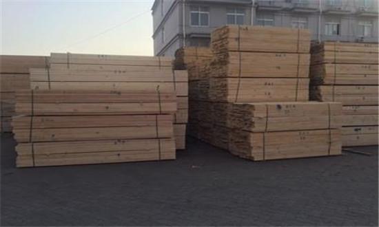 疫情过后的武汉制定未来五年林业产业新布局