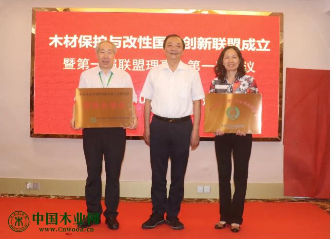 第二届全国木材保护与改性产业发展论坛暨新技术研讨会在广州隆重召开