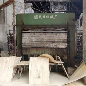 山东临沂天顺十五层小型建筑模板生产机械设备