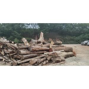 本公司现有30万立方硬杂木