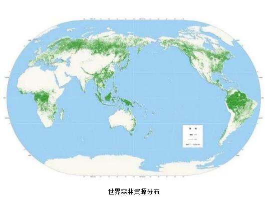 中国木材资源现状及消费趋势