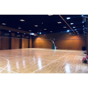 河南羽毛球馆木地板