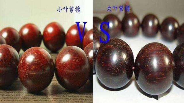 大叶紫檀和紫檀的区别