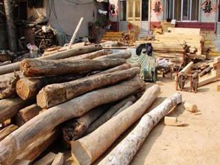 农村常见的榆树木头的用处