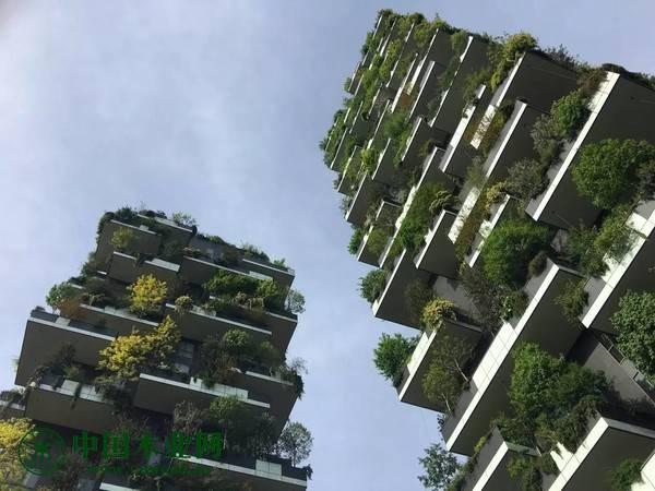 北新建材与居然之家垂直森林达成战略合作