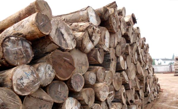 恒行2登录测速地址12月木业、纺织原材料出厂价双双上涨