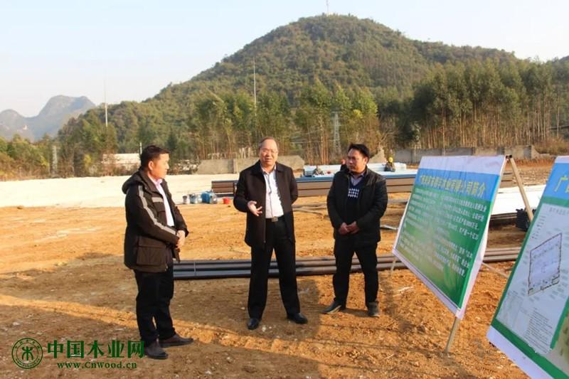 恒行2登录测速地址广西来宾市兴宾区委书记周灵到七洞乡调研木业产业发展情况