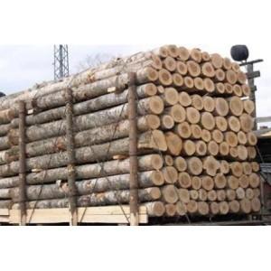 全面的木材进口报关清关干货
