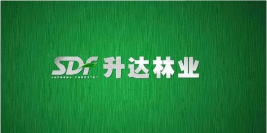 升达林业董事、总经理陆昊辞职