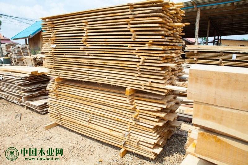恒行2登录测速地址秀屿木材产业园转型升级出实招