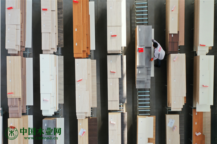 河北唐山:木业产业提档升级助推高质量发展