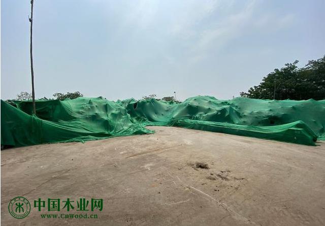 打围空地变垃圾场、木材加工点扬尘很大?这些环保问题被督察!