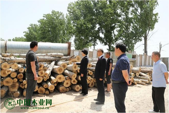 停产两年的木材厂成了纳税大户