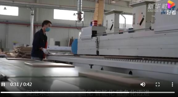 河北汉沽:木业产业提档升级助推高质量发展