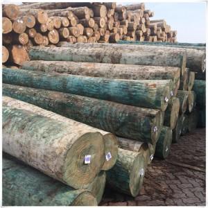 批发辐射松原木 辐射松无节材 新西兰松 防腐无节材 家具木材