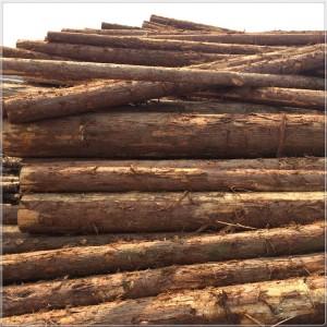 码头直发杉木桩3米4米河道打桩木防汛木桩可剥皮削尖量大价优