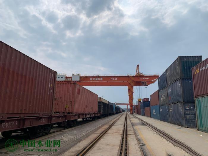探访中国内陆唯一进口木材直通口岸:助力赣南苏区产业发展