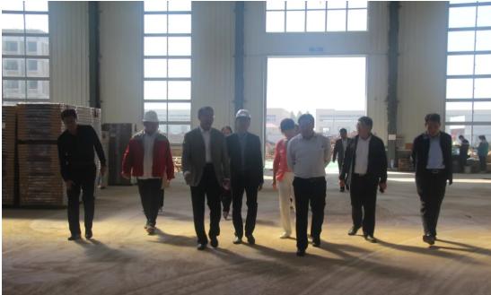 费县县委书记徐立峰到探沂镇督导重点项目建设情况